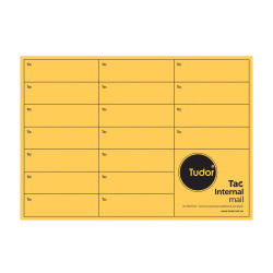 Tudor Interoffice Envelope C4 324x229mm Heavy Weight Gold Resealable Box of 250
